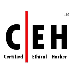 Cybertron-Cert-Logo-18